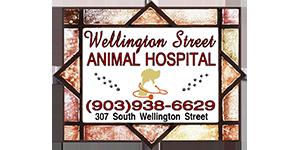 Wellington Street Animal Hospital, PLLC